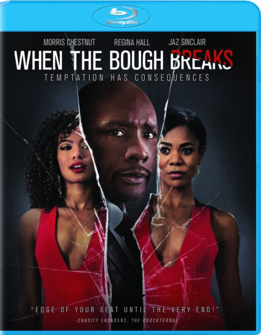 whentheboughbreaks_2016_bluray_frontflat-798x1024